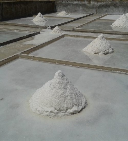 Visita guiada Salines de Vilanova de la Sal
